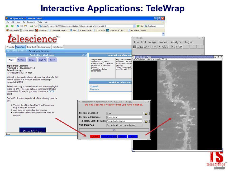 Interactive Applications: TeleWrap