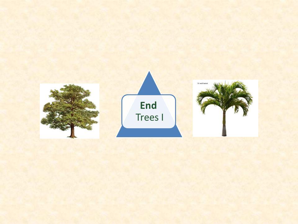 End Trees I