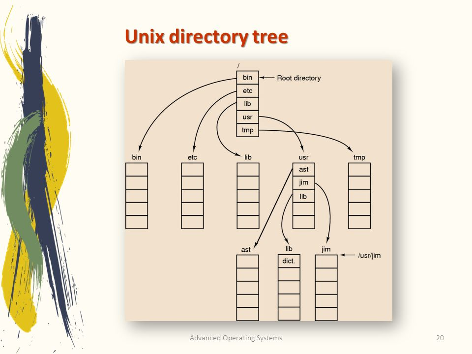 Advanced Operating Systems20 Unix directory tree