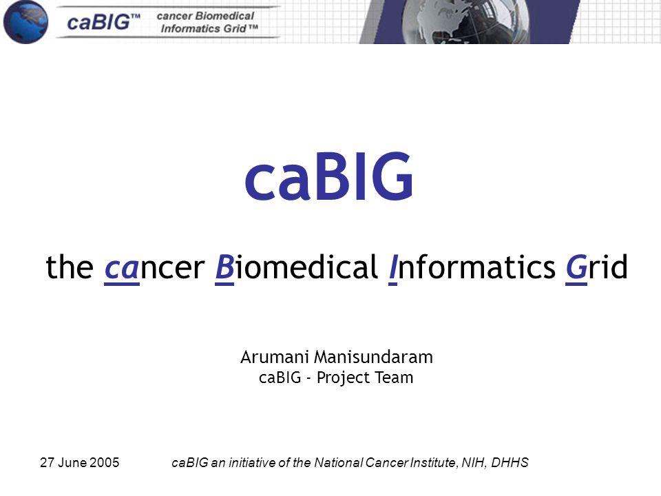 27 June 2005caBIG an initiative of the National Cancer Institute, NIH, DHHS caBIG the cancer Biomedical Informatics Grid Arumani Manisundaram caBIG - Project Team