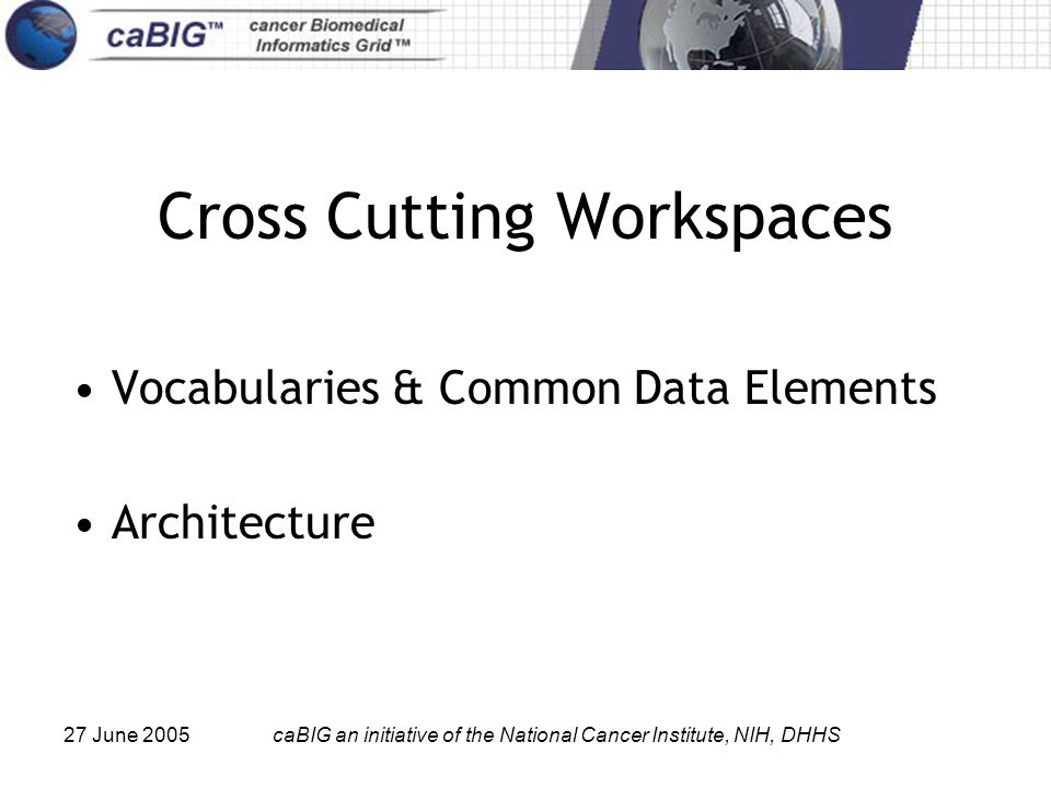 27 June 2005caBIG an initiative of the National Cancer Institute, NIH, DHHS Cross Cutting Workspaces Vocabularies & Common Data Elements Architecture