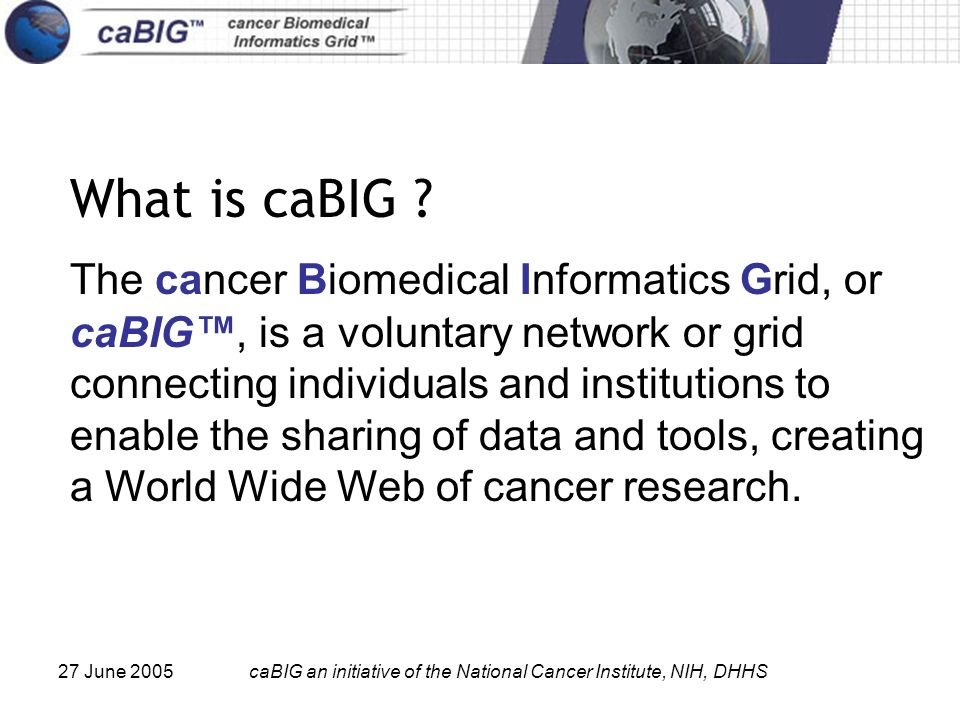 27 June 2005caBIG an initiative of the National Cancer Institute, NIH, DHHS What is caBIG ? The cancer Biomedical Informatics Grid, or caBIG, is a vol