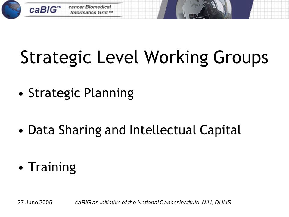 27 June 2005caBIG an initiative of the National Cancer Institute, NIH, DHHS Strategic Level Working Groups Strategic Planning Data Sharing and Intellectual Capital Training