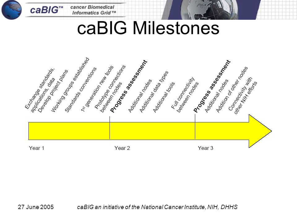 27 June 2005caBIG an initiative of the National Cancer Institute, NIH, DHHS caBIG Milestones