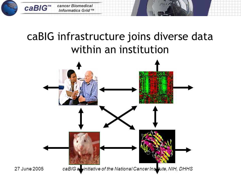 27 June 2005caBIG an initiative of the National Cancer Institute, NIH, DHHS caBIG infrastructure joins diverse data within an institution