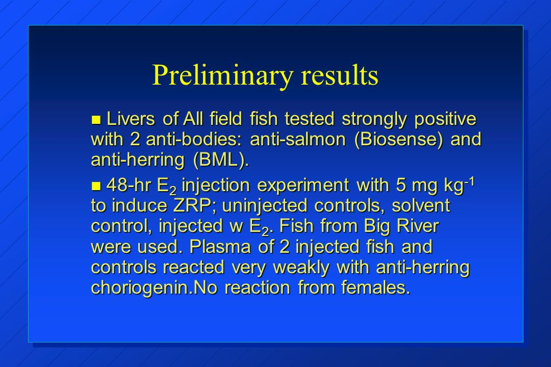 Preliminary results Livers of All field fish tested strongly positive with 2 anti-bodies: anti-salmon (Biosense) and anti-herring (BML).