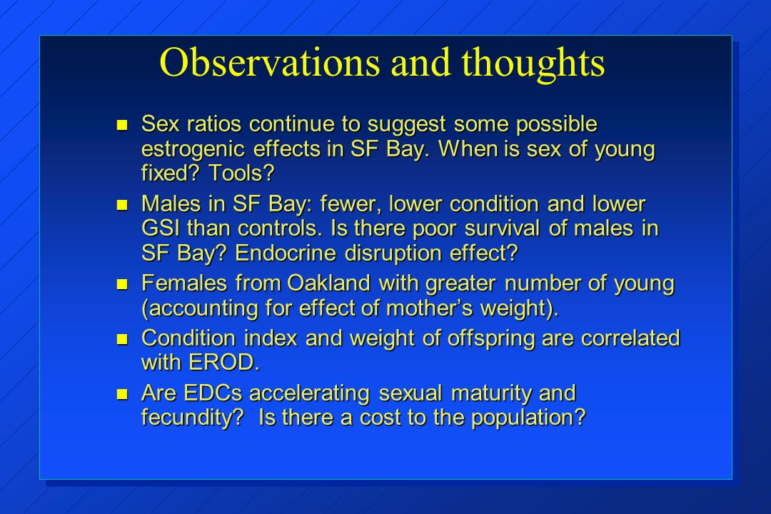 Observations and thoughts Sex ratios continue to suggest some possible estrogenic effects in SF Bay.