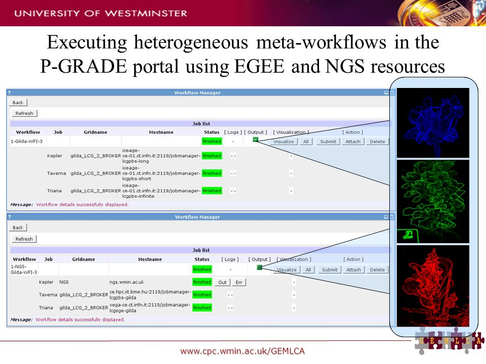 www.cpc.wmin.ac.uk/GEMLCA Executing heterogeneous meta-workflows in the P-GRADE portal using EGEE and NGS resources