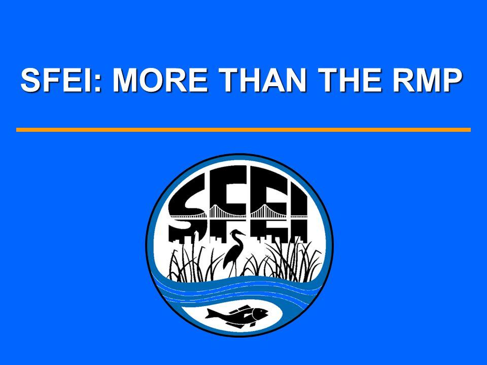SFEI: MORE THAN THE RMP