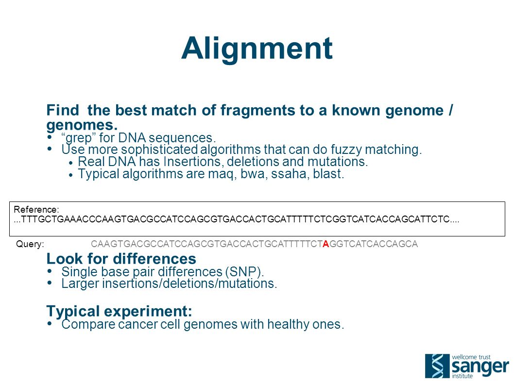 Alignment Find the best match of fragments to a known genome / genomes.
