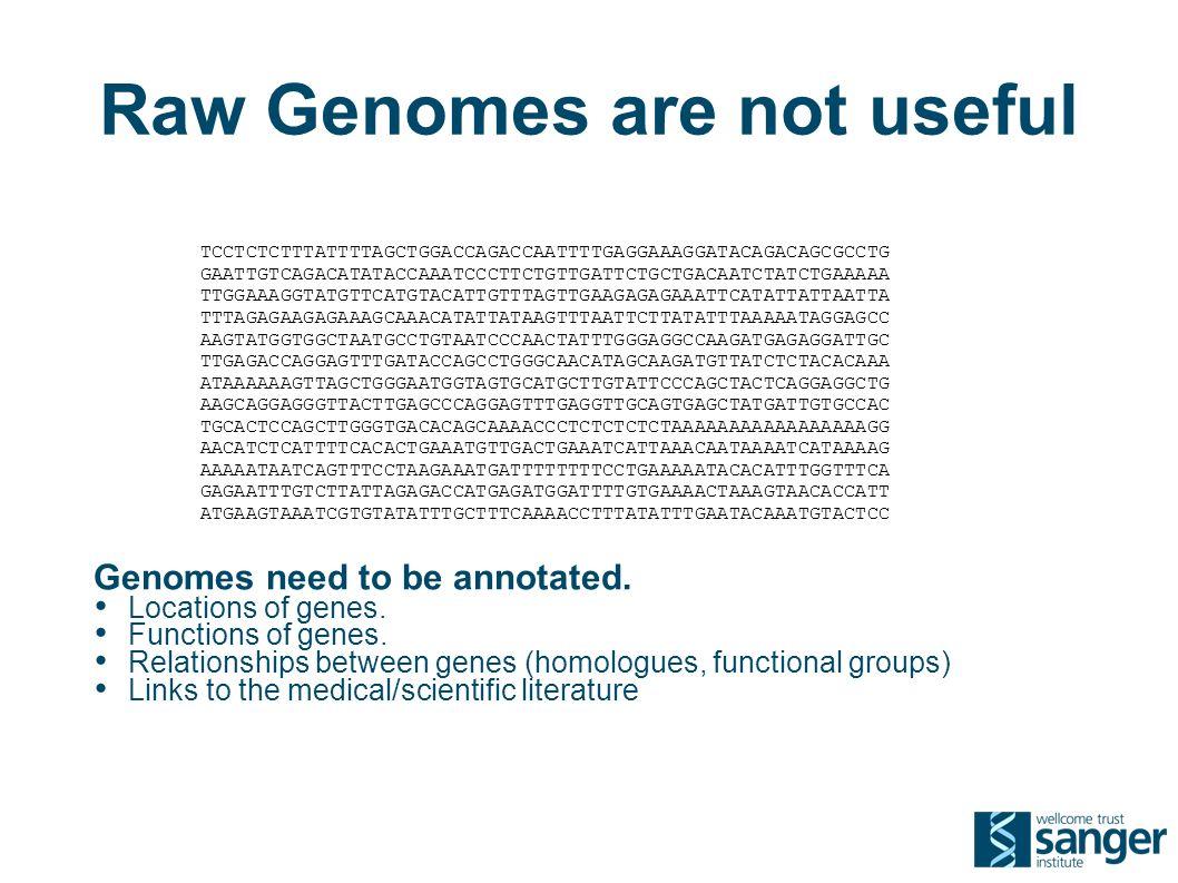 Raw Genomes are not useful TCCTCTCTTTATTTTAGCTGGACCAGACCAATTTTGAGGAAAGGATACAGACAGCGCCTG GAATTGTCAGACATATACCAAATCCCTTCTGTTGATTCTGCTGACAATCTATCTGAAAAA TTGGAAAGGTATGTTCATGTACATTGTTTAGTTGAAGAGAGAAATTCATATTATTAATTA TTTAGAGAAGAGAAAGCAAACATATTATAAGTTTAATTCTTATATTTAAAAATAGGAGCC AAGTATGGTGGCTAATGCCTGTAATCCCAACTATTTGGGAGGCCAAGATGAGAGGATTGC TTGAGACCAGGAGTTTGATACCAGCCTGGGCAACATAGCAAGATGTTATCTCTACACAAA ATAAAAAAGTTAGCTGGGAATGGTAGTGCATGCTTGTATTCCCAGCTACTCAGGAGGCTG AAGCAGGAGGGTTACTTGAGCCCAGGAGTTTGAGGTTGCAGTGAGCTATGATTGTGCCAC TGCACTCCAGCTTGGGTGACACAGCAAAACCCTCTCTCTCTAAAAAAAAAAAAAAAAAGG AACATCTCATTTTCACACTGAAATGTTGACTGAAATCATTAAACAATAAAATCATAAAAG AAAAATAATCAGTTTCCTAAGAAATGATTTTTTTTCCTGAAAAATACACATTTGGTTTCA GAGAATTTGTCTTATTAGAGACCATGAGATGGATTTTGTGAAAACTAAAGTAACACCATT ATGAAGTAAATCGTGTATATTTGCTTTCAAAACCTTTATATTTGAATACAAATGTACTCC Genomes need to be annotated.
