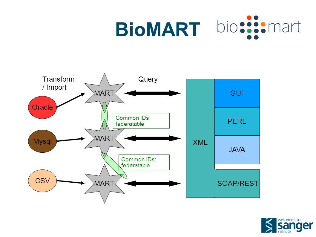 BioMART Oracle CSV Mysql MART XML GUI PERL SOAP/REST JAVA Transform / Import Query Common IDs: federatable Common IDs: federatable