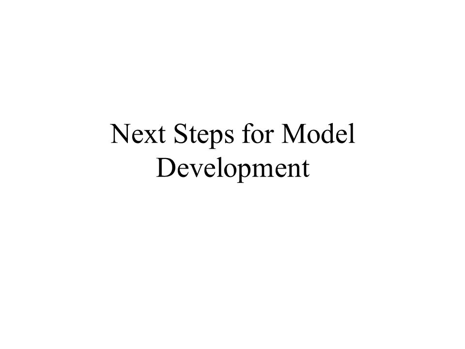 Next Steps for Model Development