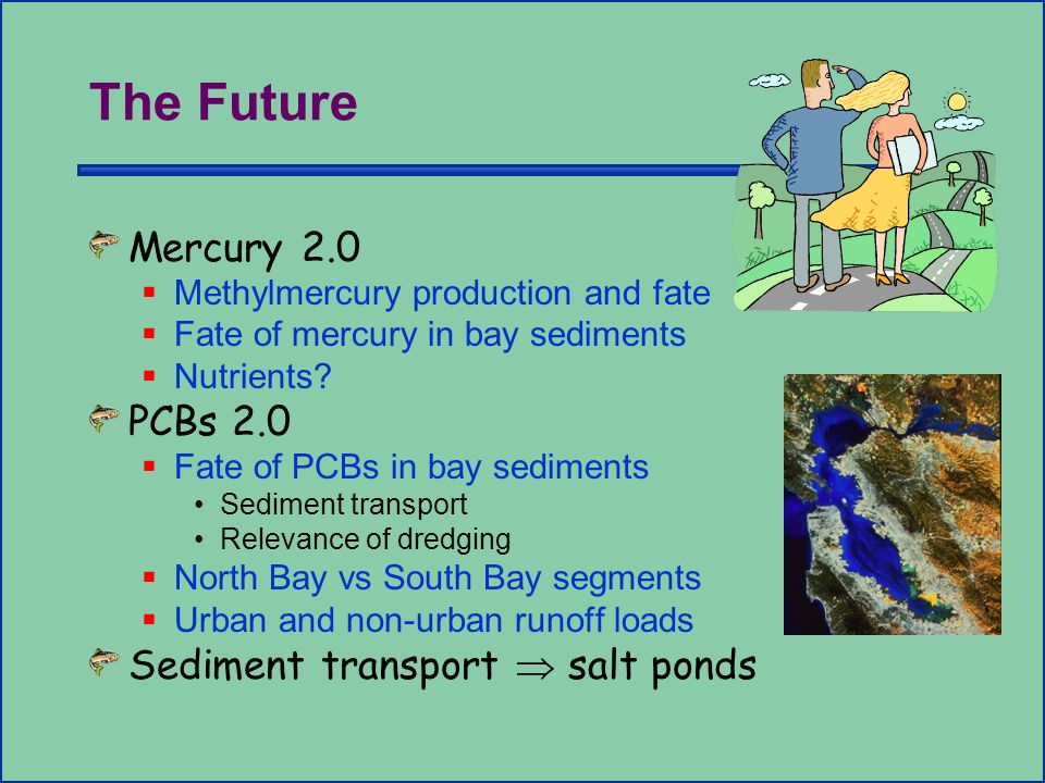 The Future Mercury 2.0 Methylmercury production and fate Fate of mercury in bay sediments Nutrients.