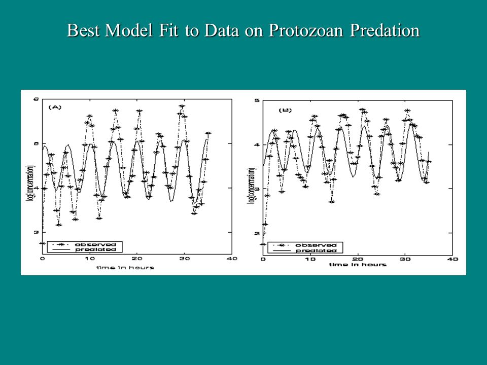 Best Model Fit to Data on Protozoan Predation
