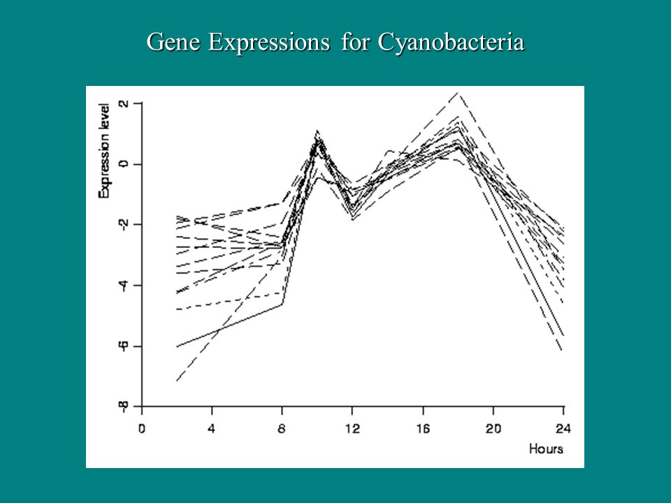 Gene Expressions for Cyanobacteria