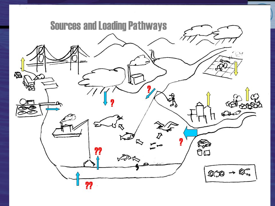 Sources and Loading Pathways