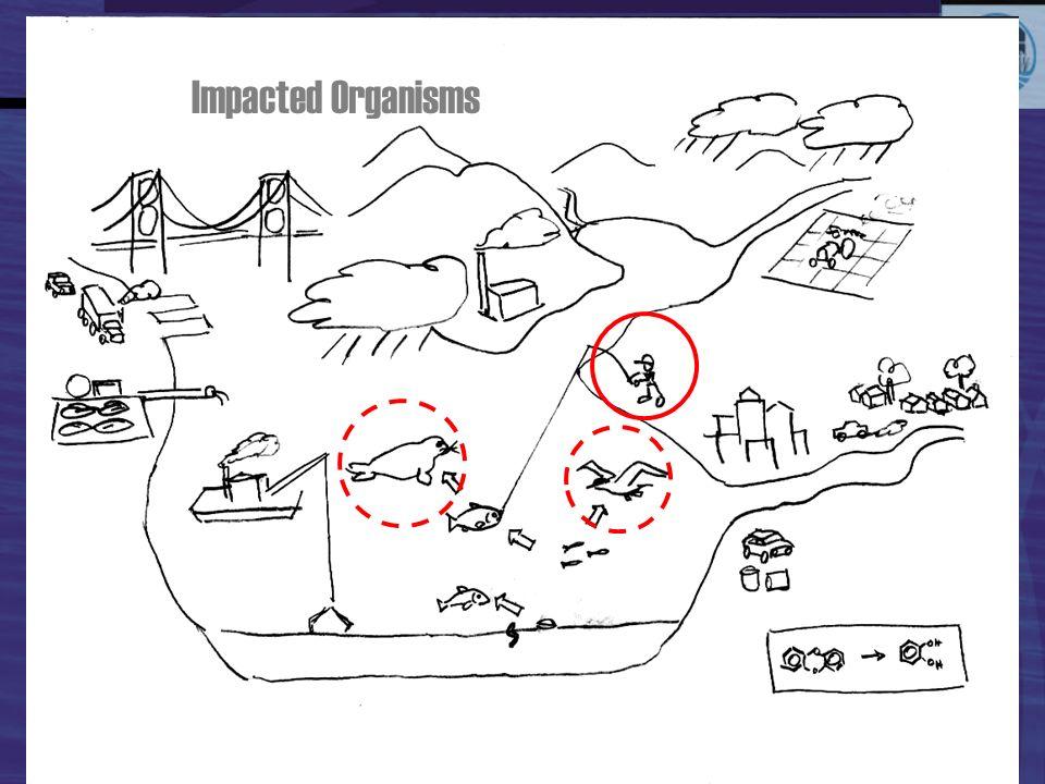 Impacted Organisms