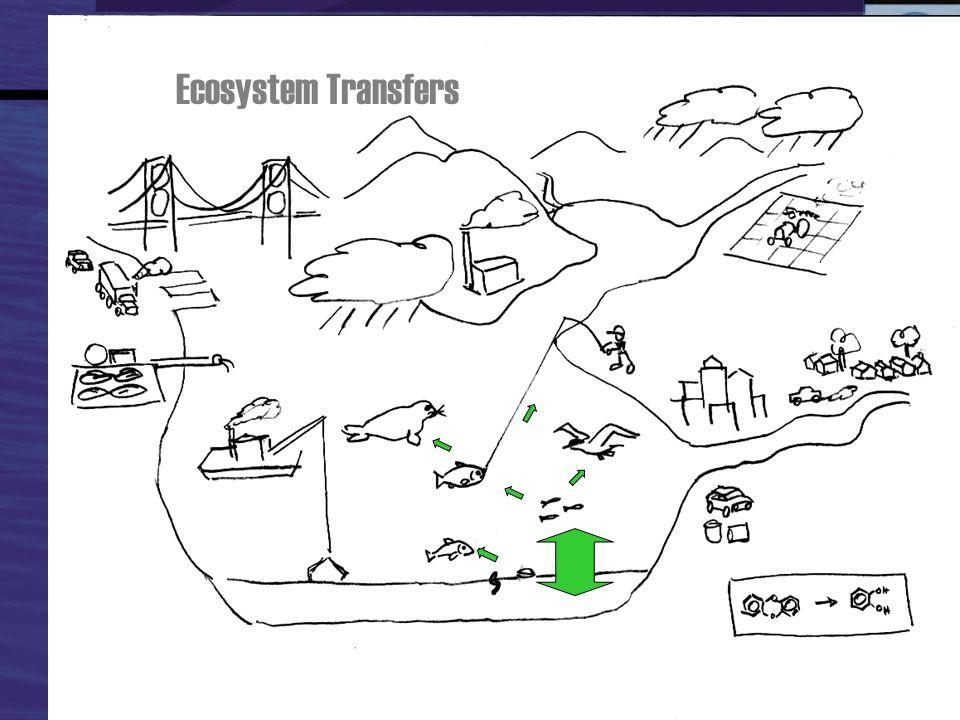 Ecosystem Transfers