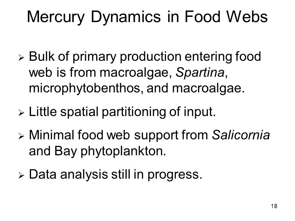 18 Mercury Dynamics in Food Webs Bulk of primary production entering food web is from macroalgae, Spartina, microphytobenthos, and macroalgae.