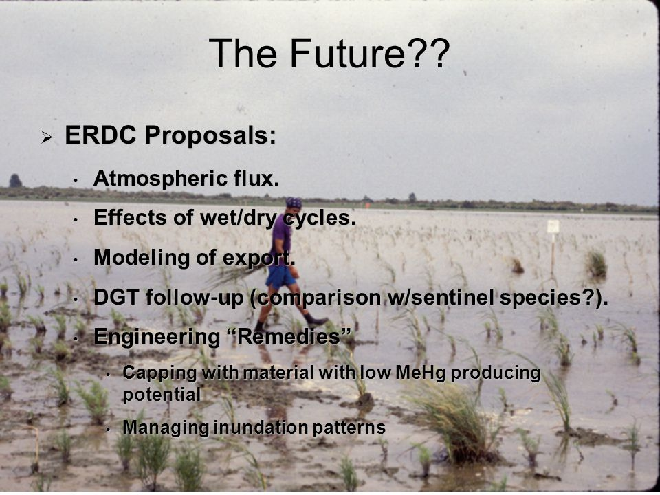 24 The Future . ERDC Proposals: ERDC Proposals: Atmospheric flux.