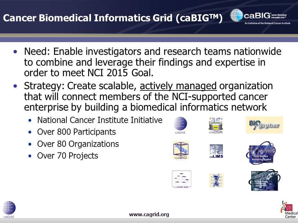 www.cagrid.org Cancer Biomedical Informatics Grid (caBIG TM ) Need: Enable investigators and research teams nationwide to combine and leverage their findings and expertise in order to meet NCI 2015 Goal.