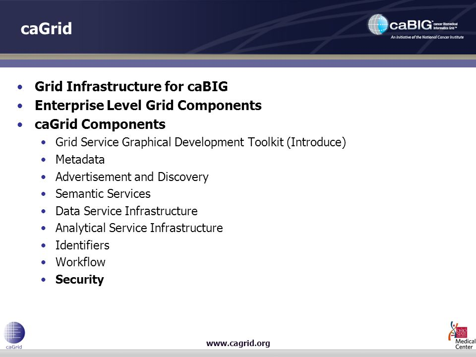 caGrid Grid Infrastructure for caBIG Enterprise Level Grid Components caGrid Components Grid Service Graphical Development Toolkit (Introduce) Metadata Advertisement and Discovery Semantic Services Data Service Infrastructure Analytical Service Infrastructure Identifiers Workflow Security
