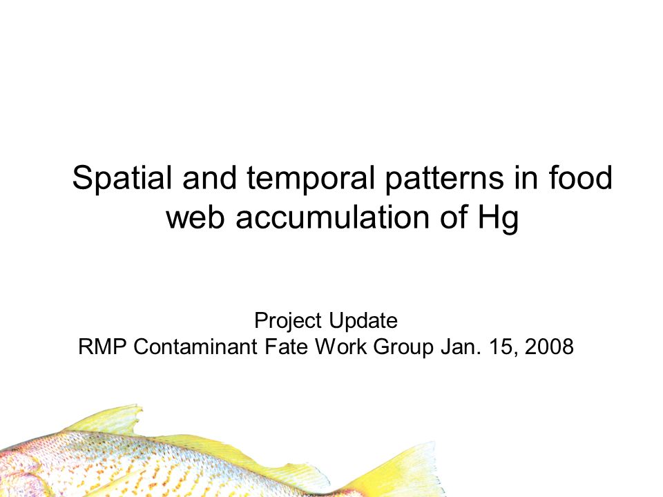 Coordinate with SBMP sites: Improve understanding of wetland – Bay linkages Marsh fish Brine flies Song sparrows Topsmelt Silversides