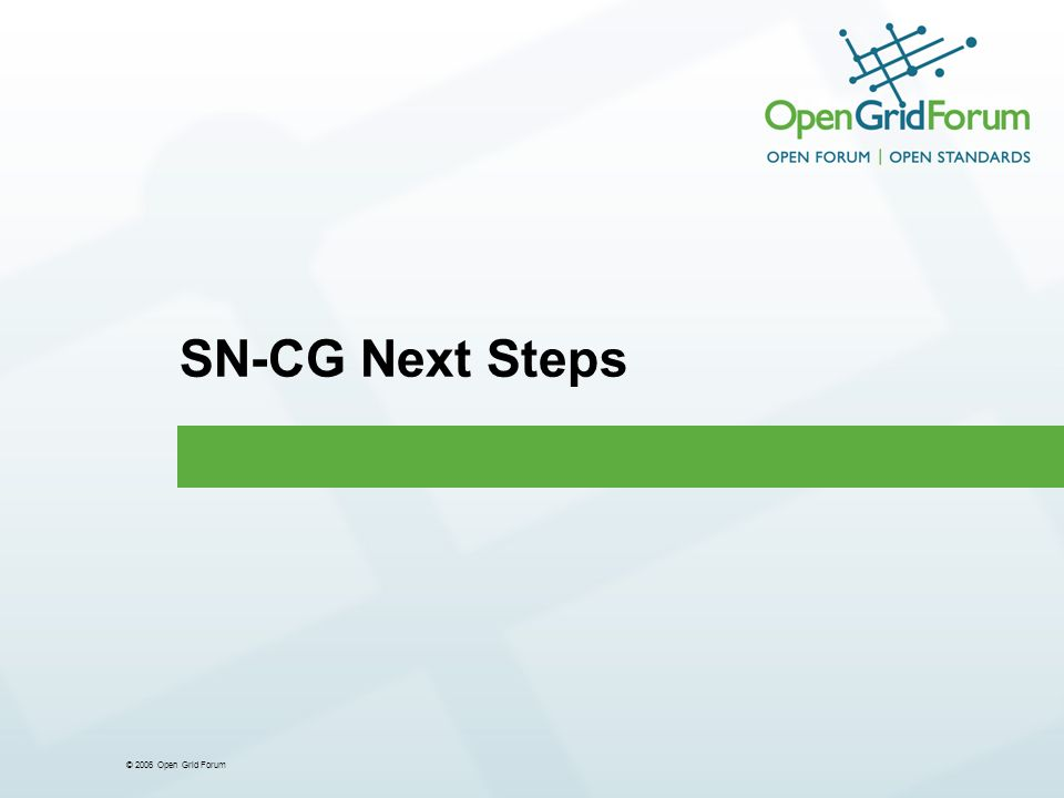 © 2006 Open Grid Forum SN-CG Next Steps