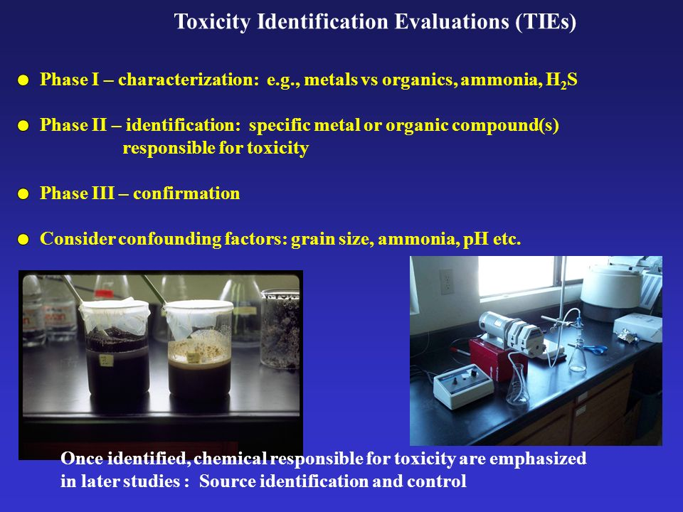 Toxicity Identification Evaluations (TIEs) Phase I – characterization: e.g., metals vs organics, ammonia, H 2 S Phase II – identification: specific me