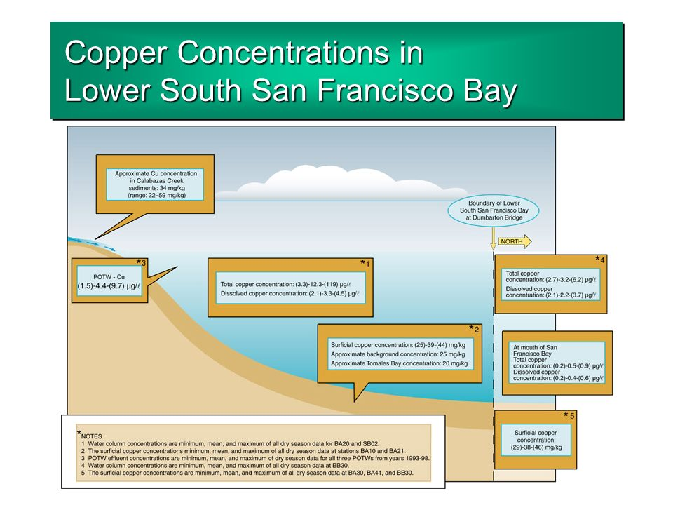 Copper Concentrations in Lower South San Francisco Bay
