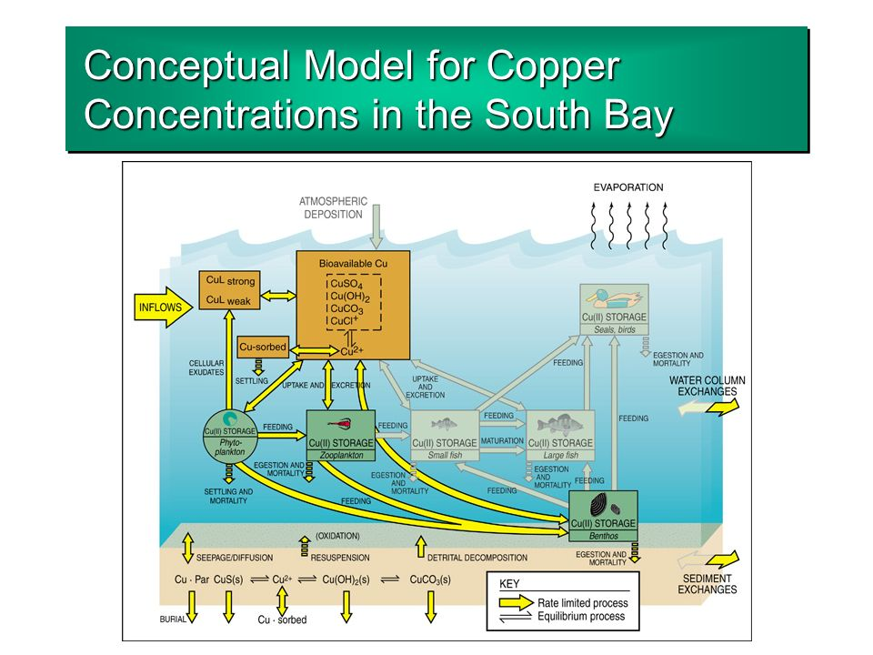 Conceptual Model for Copper Concentrations in the South Bay