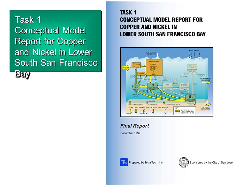 Task 1 Conceptual Model Report for Copper and Nickel in Lower South San Francisco Bay