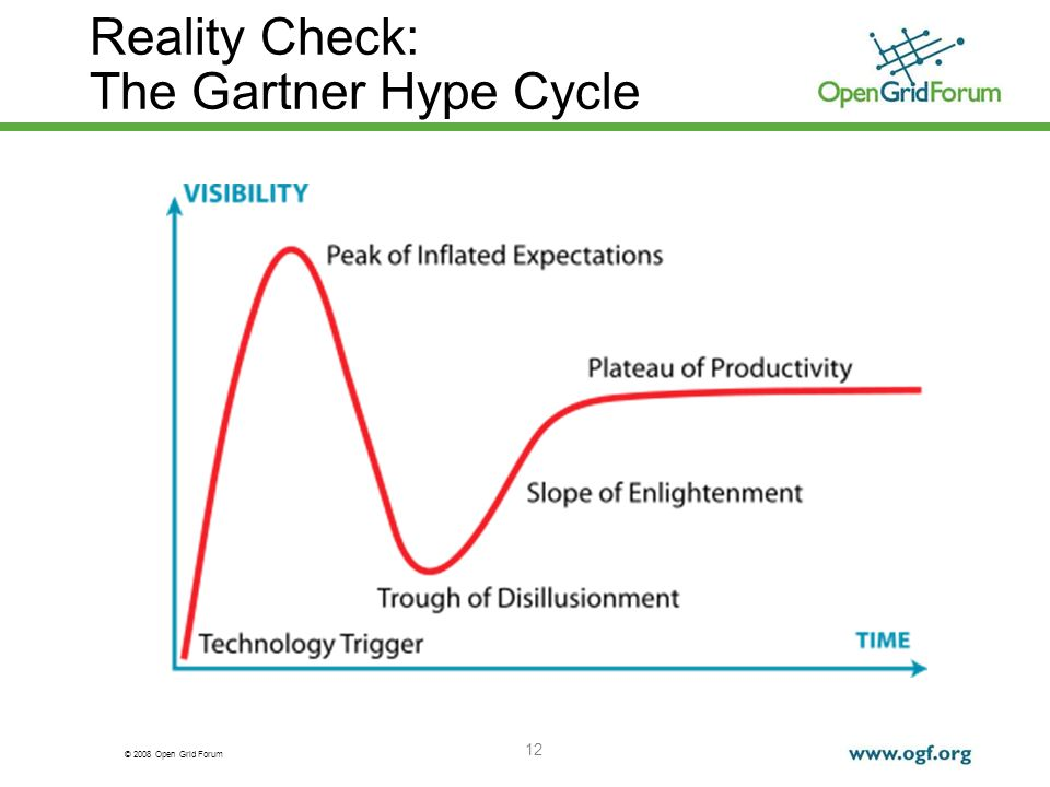 © 2008 Open Grid Forum 12 Reality Check: The Gartner Hype Cycle