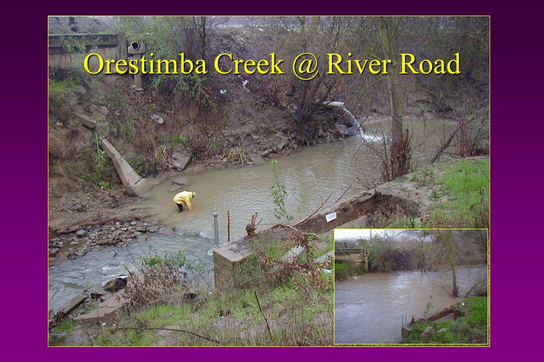Orestimba Creek @ River Road