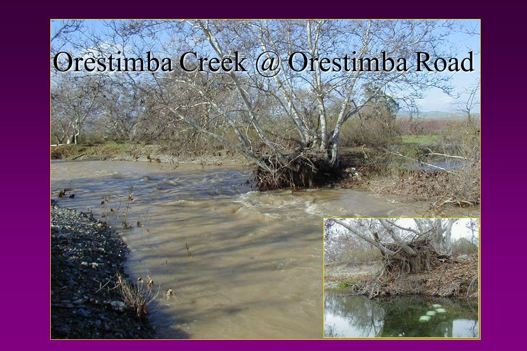 Orestimba Creek @ Orestimba Road