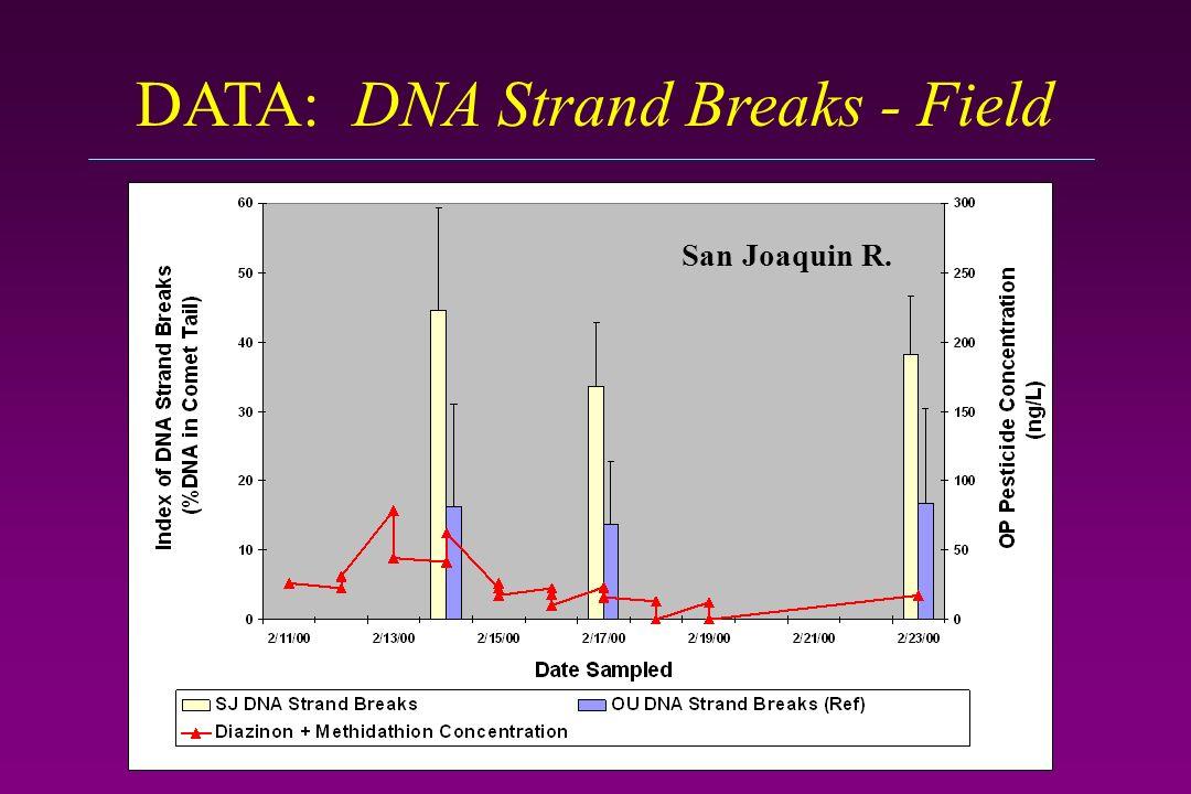 DATA: DNA Strand Breaks - Field San Joaquin R.