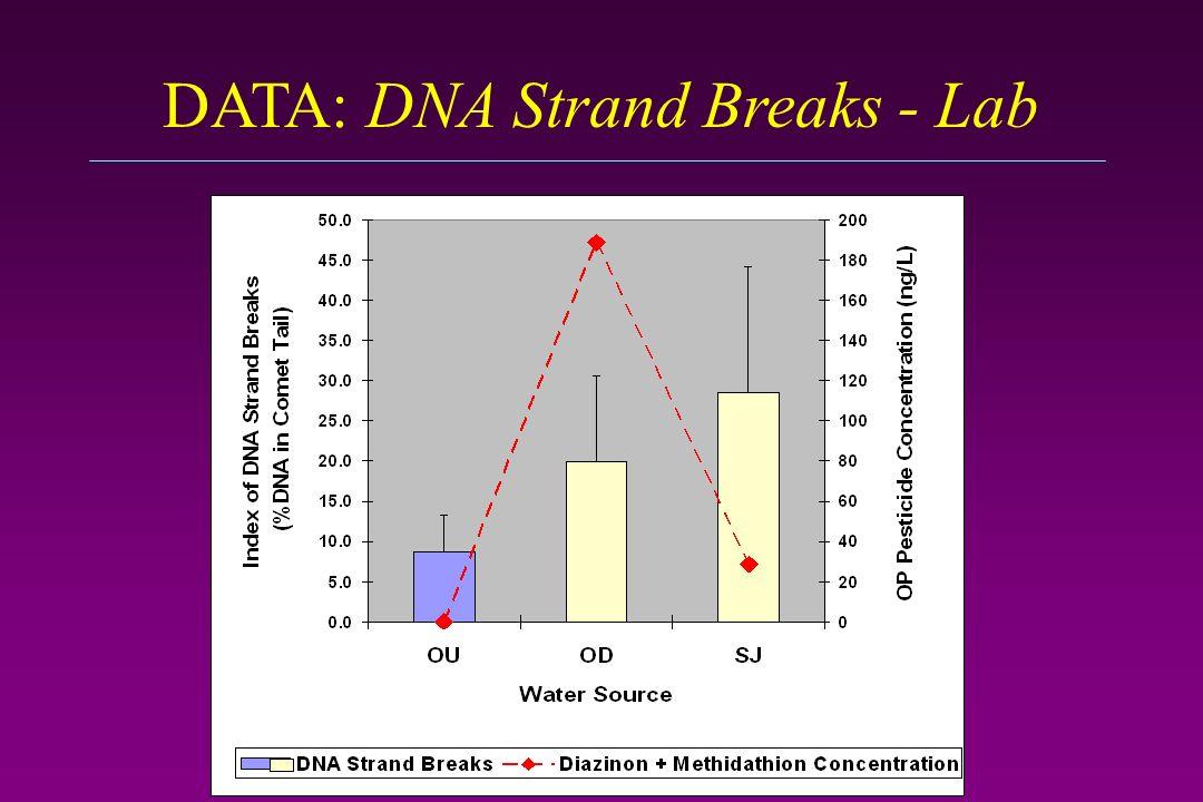 DATA: DNA Strand Breaks - Lab