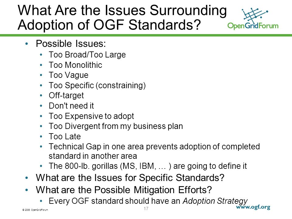 © 2006 OpenGridForum 17 What Are the Issues Surrounding Adoption of OGF Standards.