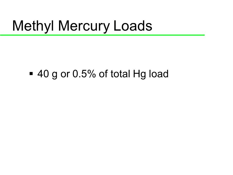 Methyl Mercury Loads 40 g or 0.5% of total Hg load