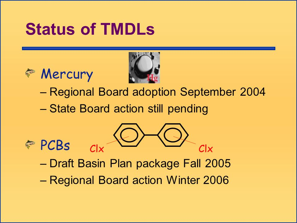 Status of TMDLs Mercury –Regional Board adoption September 2004 –State Board action still pending PCBs –Draft Basin Plan package Fall 2005 –Regional B