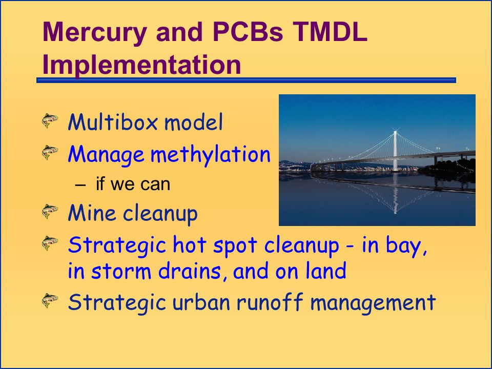 Multibox model Manage methylation – if we can Mine cleanup Strategic hot spot cleanup - in bay, in storm drains, and on land Strategic urban runoff ma