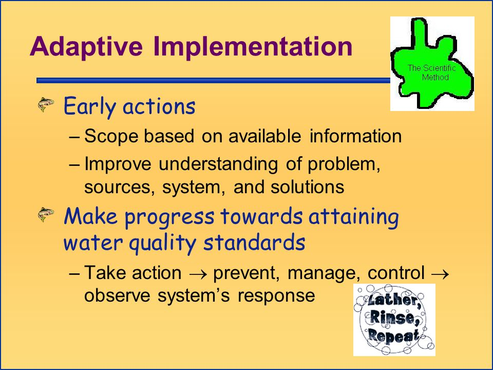 Adaptive Implementation Early actions –Scope based on available information –Improve understanding of problem, sources, system, and solutions Make pro