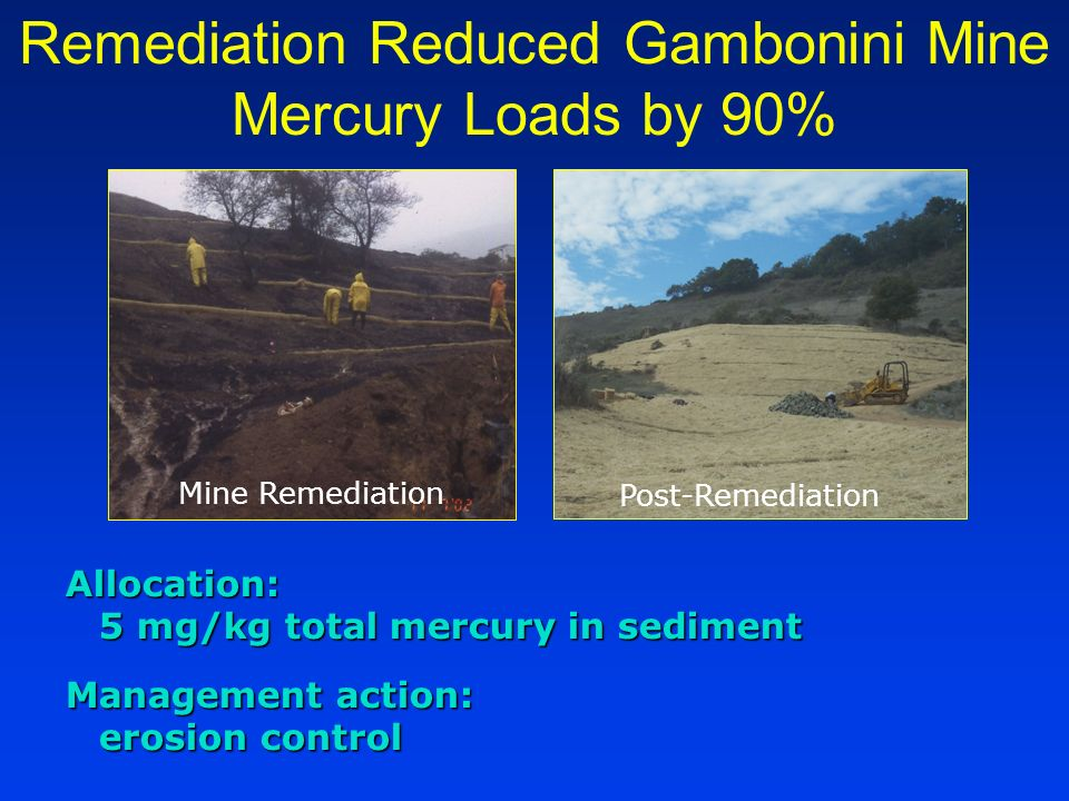 Allocation: 5 mg/kg total mercury in sediment Management action: erosion control Remediation Reduced Gambonini Mine Mercury Loads by 90% Mine Remediat
