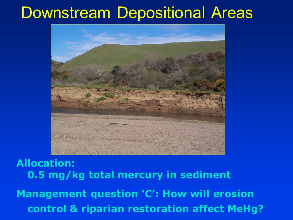 Downstream Depositional Areas Allocation: 0.5 mg/kg total mercury in sediment Management question C: How will erosion control & riparian restoration affect MeHg