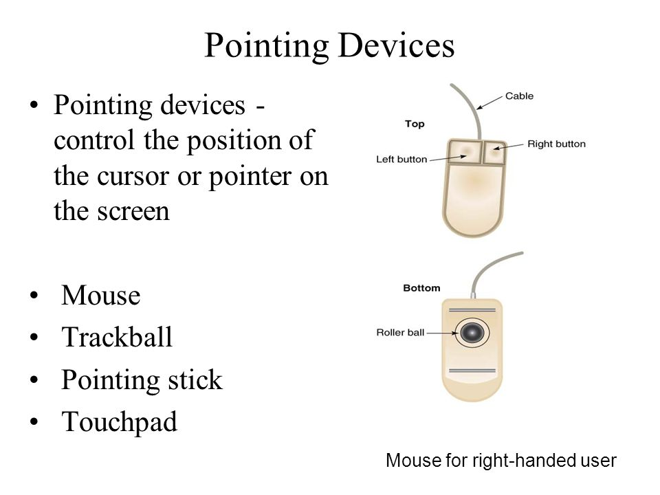 Pointing Devices Pointing devices - control the position of the cursor or pointer on the screen Mouse Trackball Pointing stick Touchpad Mouse for righ