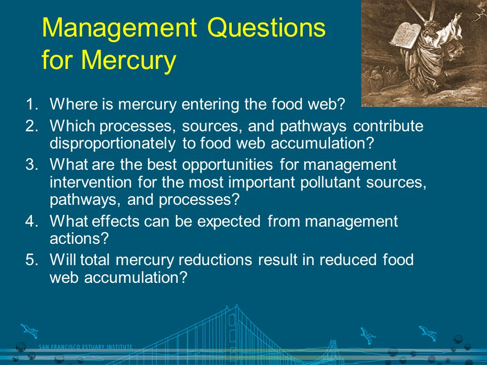 Management Questions for Mercury 1.Where is mercury entering the food web? 2.Which processes, sources, and pathways contribute disproportionately to f