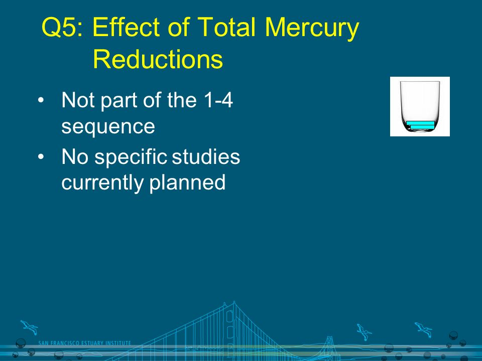 Q5: Effect of Total Mercury Reductions Not part of the 1-4 sequence No specific studies currently planned