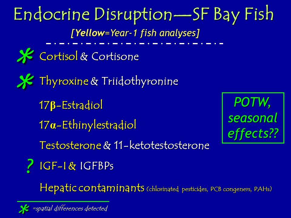 Thyroxine & Triidothyronine Testosterone & 11-ketotestosterone 17 β -Estradiol IGF-I & IGFBPs Endocrine DisruptionSF Bay Fish Cortisol & Cortisone * *
