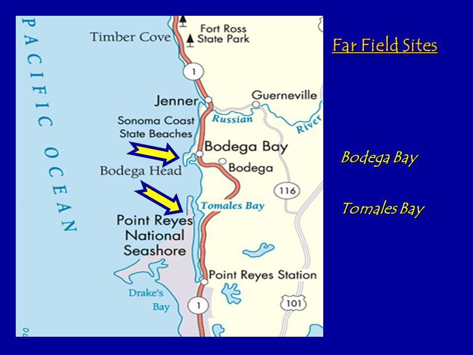 Tomales Bay Bodega Bay Far Field Sites